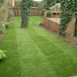 A New Garden Lawn